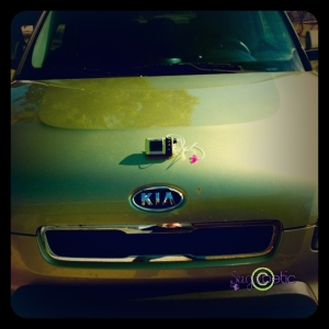 "Yes, I own an ""Alien"" green Kia Soul... and a green Animas Ping insulin pump... totally unintentional!"